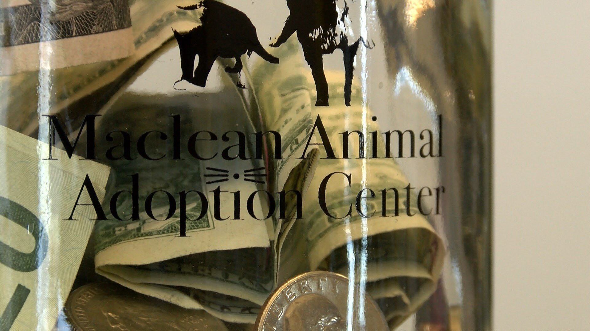 """Change Their World"" fundraiser happening around Great Falls to benefit the Maclean Animal Adoption Center"