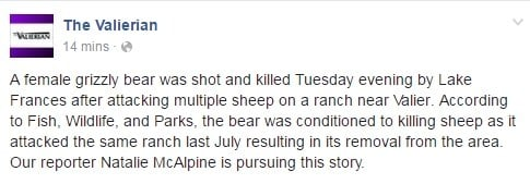 The Valierian reports that the bear has been killed.