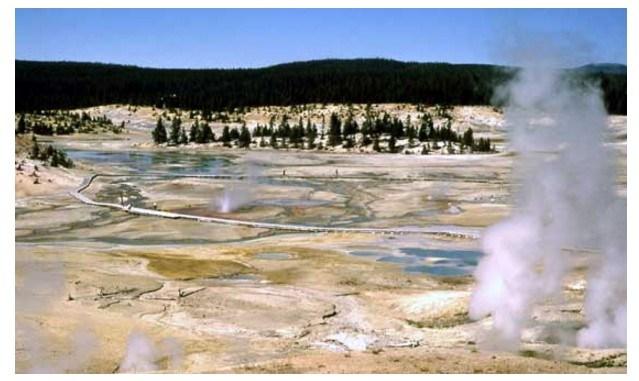 Norris Geyser Basin (Yellowstone National Park photo)