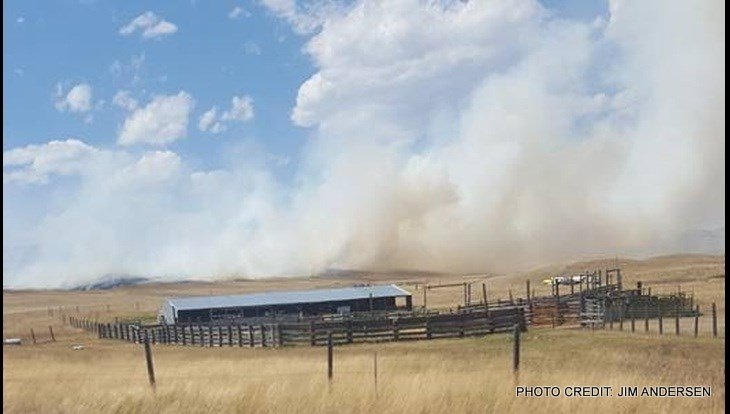 The Wilson Fire started just before 2 p.m. and has burned a little more than 600 acres.