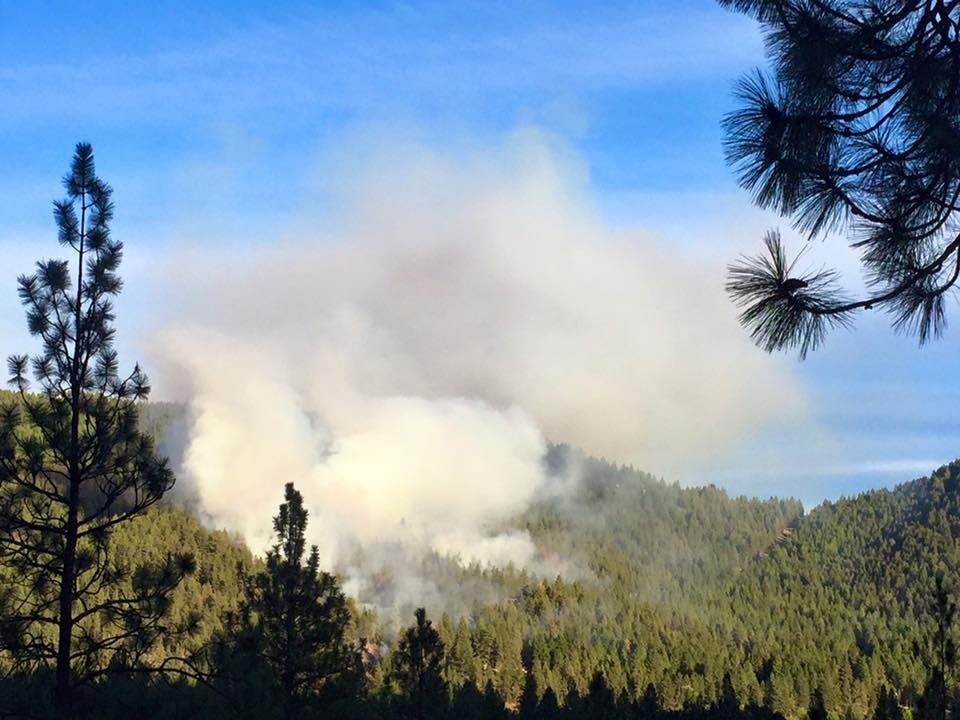 Residents in the Colorado Gulch area of Missoula are being evacuated due to a fast-moving brush fire. (Photo: Dennis Bragg - MTN News)