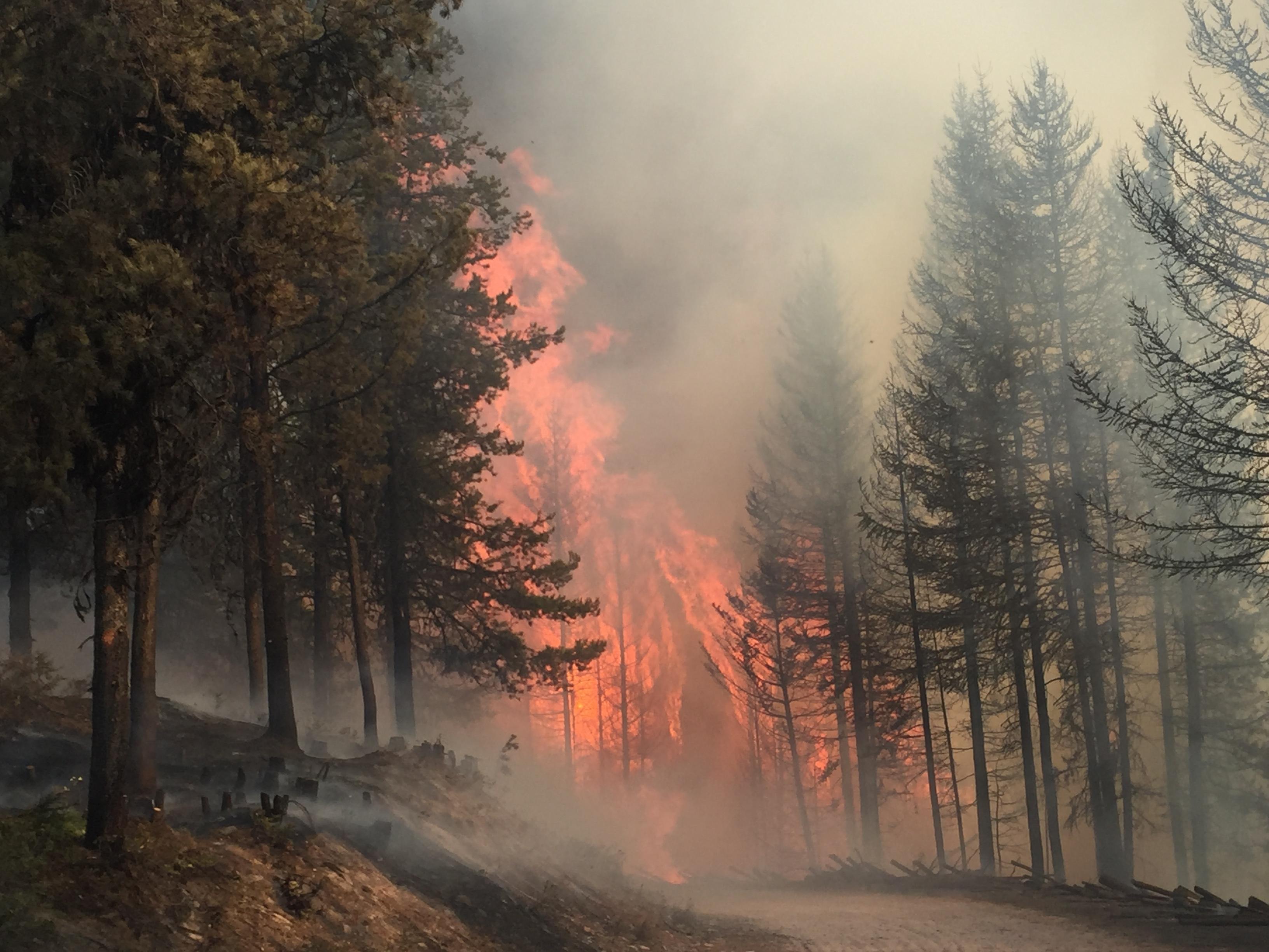 Rice Ridge Fire (inciweb.org photo)