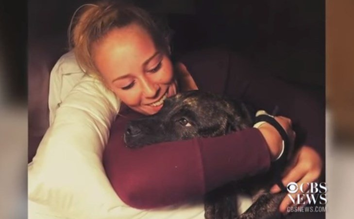 Woman mauled to death by her dogs