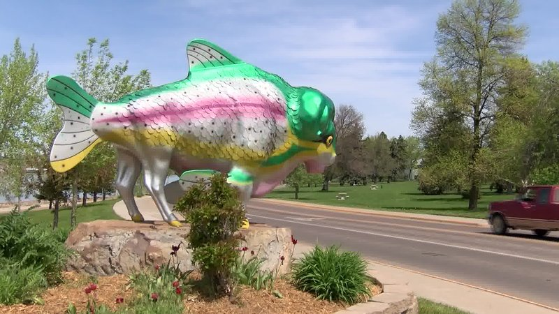 Rainboffalo returns to river 39 s edge trail krtv news in for Bison motors great falls mt