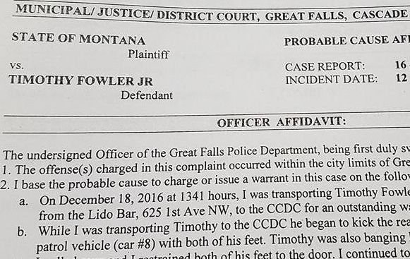 timothy jay fowler jr has been charged after he allegedly damaged a great