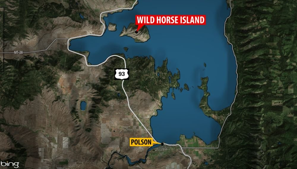 Fwp Wardens Extinguished An Illegal Campfire On Wild Horse