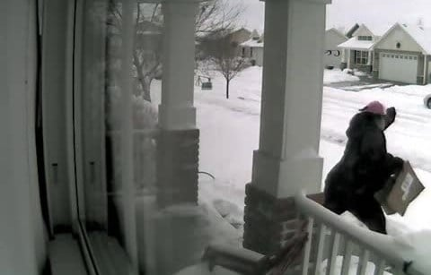 The thievespulled up to the mailbox in an SUV, took the mail, and calmly walked up the driveway to the front door, snatchedseveral packages, then darted across the snow-covered lawn for the getaway.